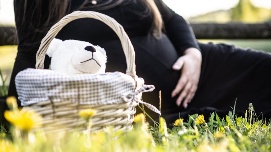 бременност+билки